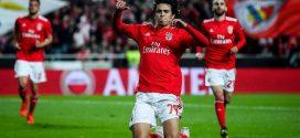 Joao Felix jugador del Benfica