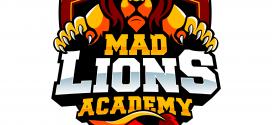MAD logo (medium.com)